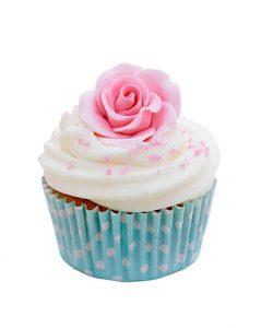 designer cupcakes porirua